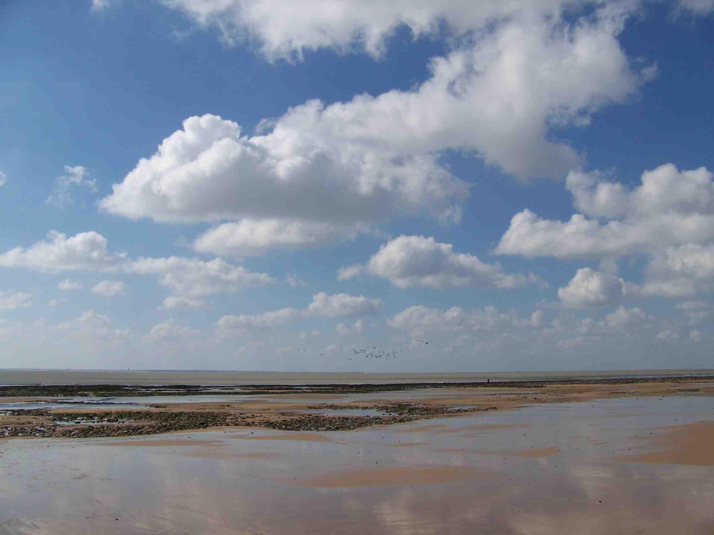 MB Mars 2007 JPEG.jpg