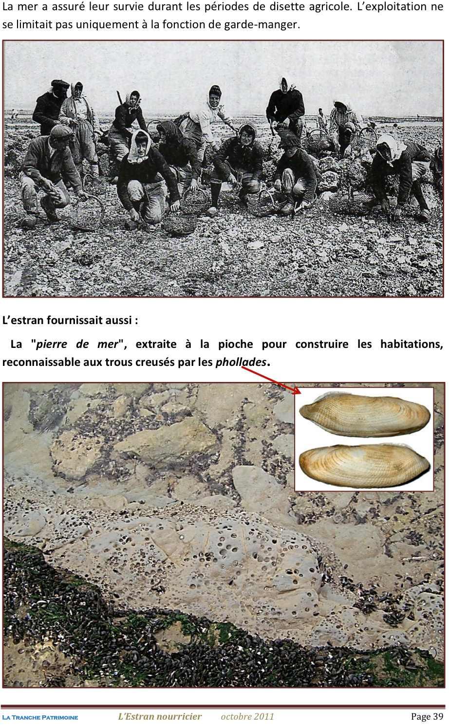 Lestran Nourricier 39 jpeg1.jpg
