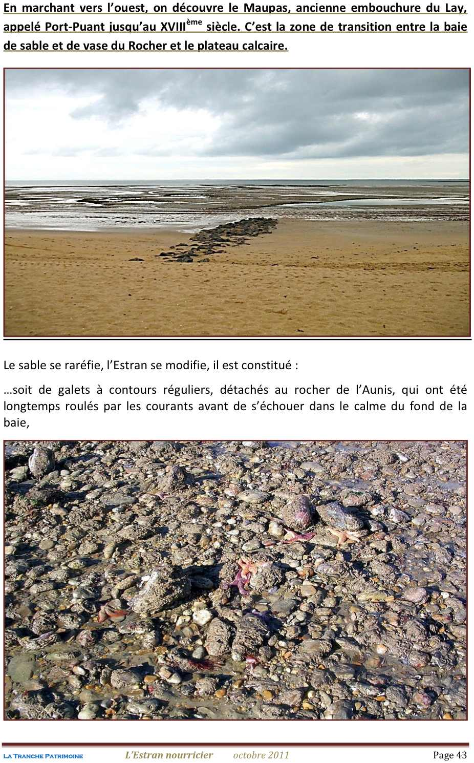 Lestran Nourricier 43 jpeg1.jpg