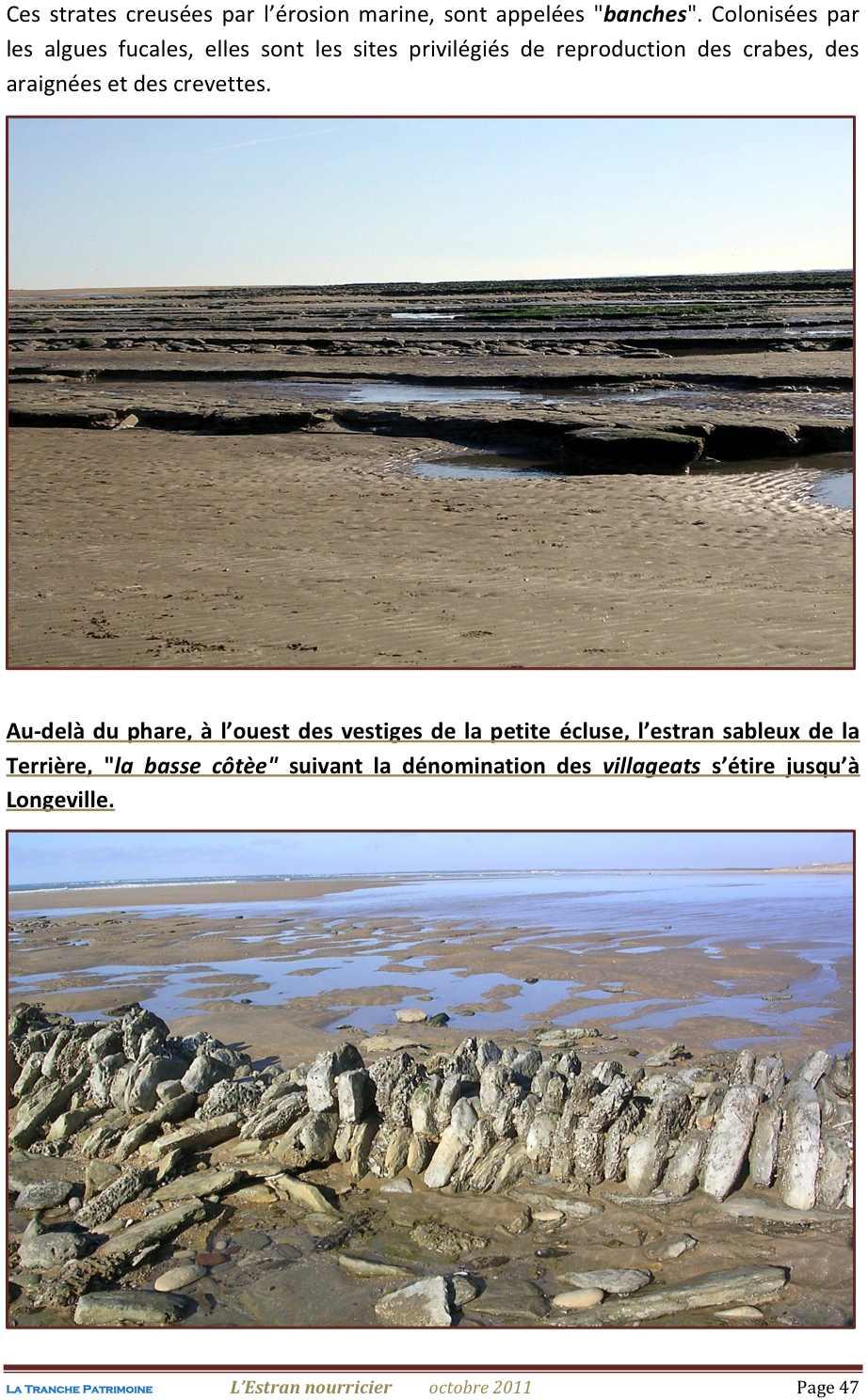 Lestran Nourricier 47 jpeg1.jpg