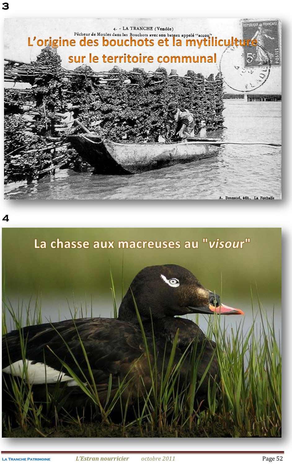 Lestran Nourricier 52 jpeg1.jpg